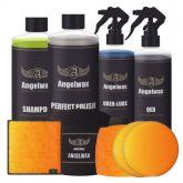 Angelwax 5 Stappen Plan